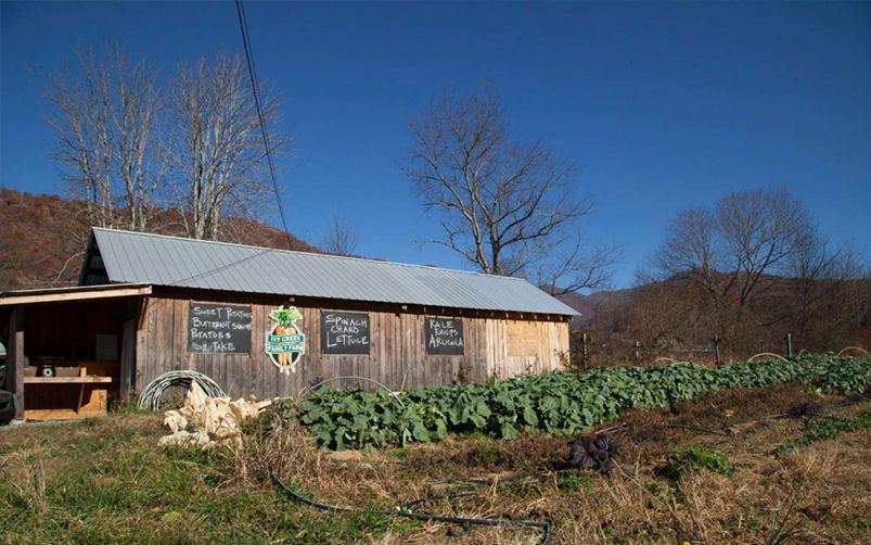 Ivy Creek Family Farm I Love Barnardsville